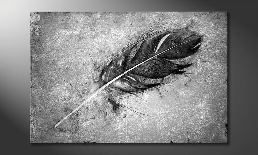 De exclusieve kunstdruk Beautiful Feather