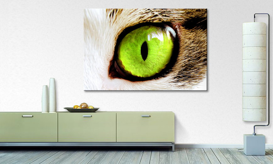 Fine Art print Cats Eye