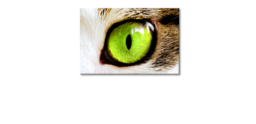 Fine-Art-print-Cats-Eye