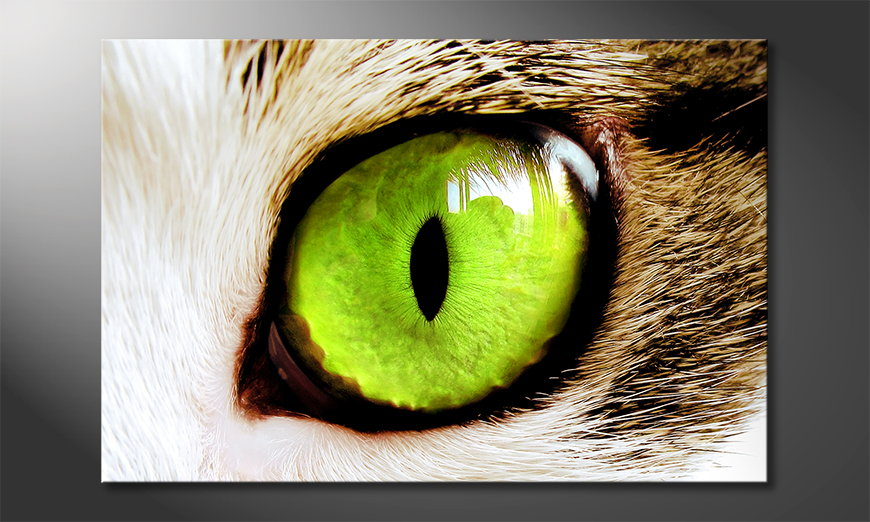 Fine-Art print Cats Eye