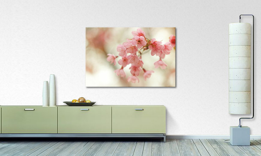 Fine Art print Cherry Blossoms