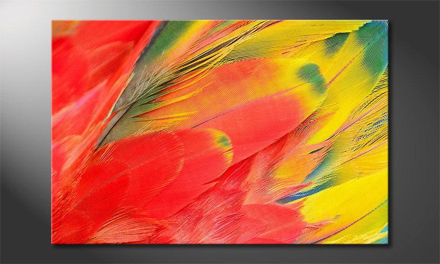 Fine-Art print Parrot Feathers