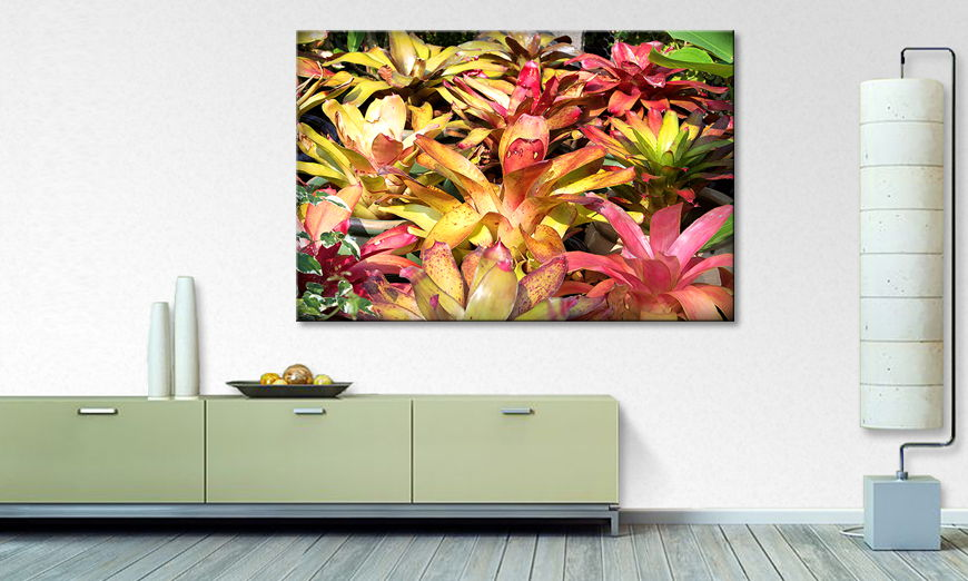 Fine Art print Powerful Plants