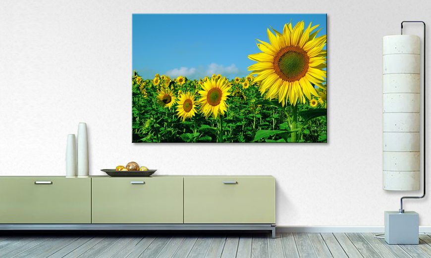 Het foto canvas A Place in the Sun