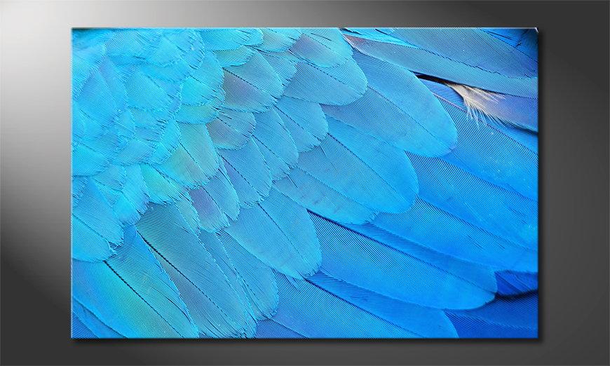 Het foto canvas Bird Feathers