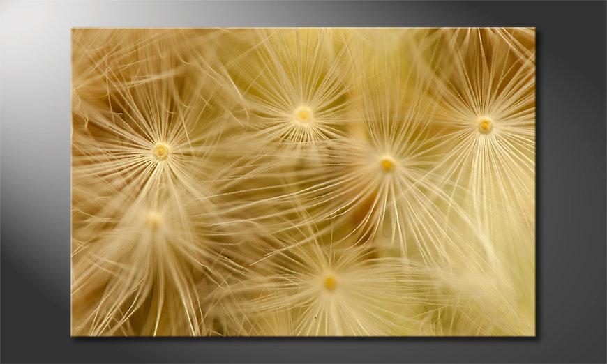 Het foto canvas Dandelion Closeup