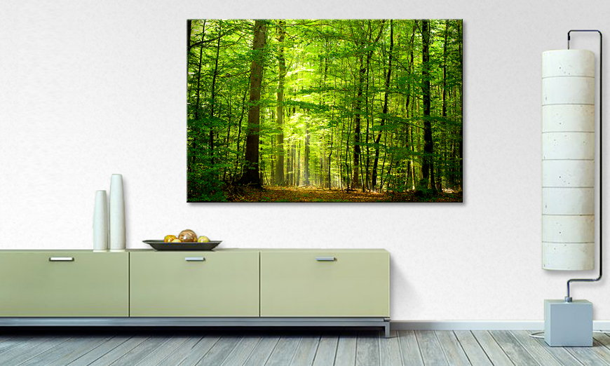 Het foto canvas Into the Forest