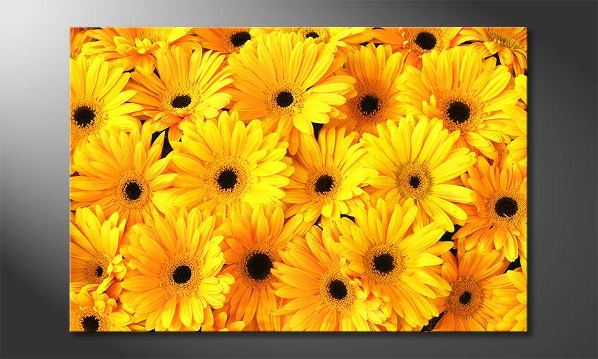 Het foto canvas Sunny Mood