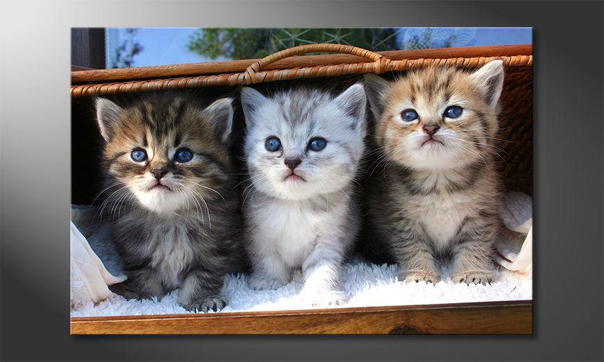 Het foto canvas Three little friends