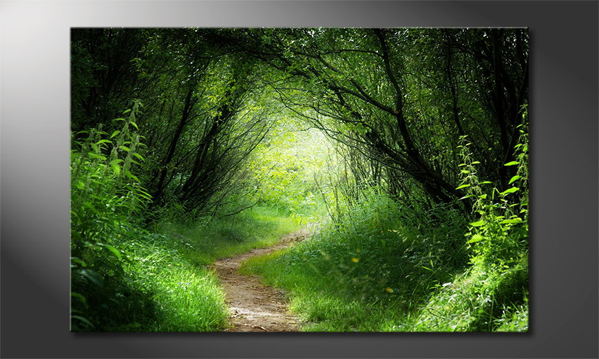 Het foto canvas Way into the Forest