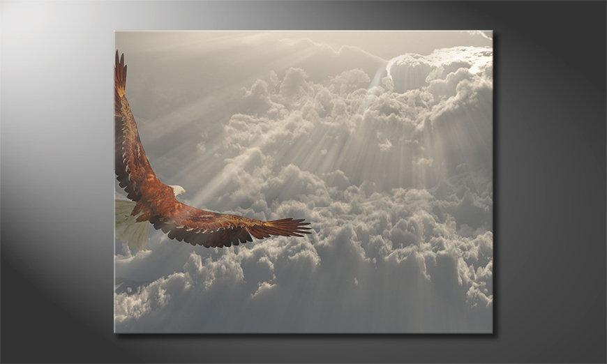 Het gedrukte beeld Eagle in Flight 100x80 cm