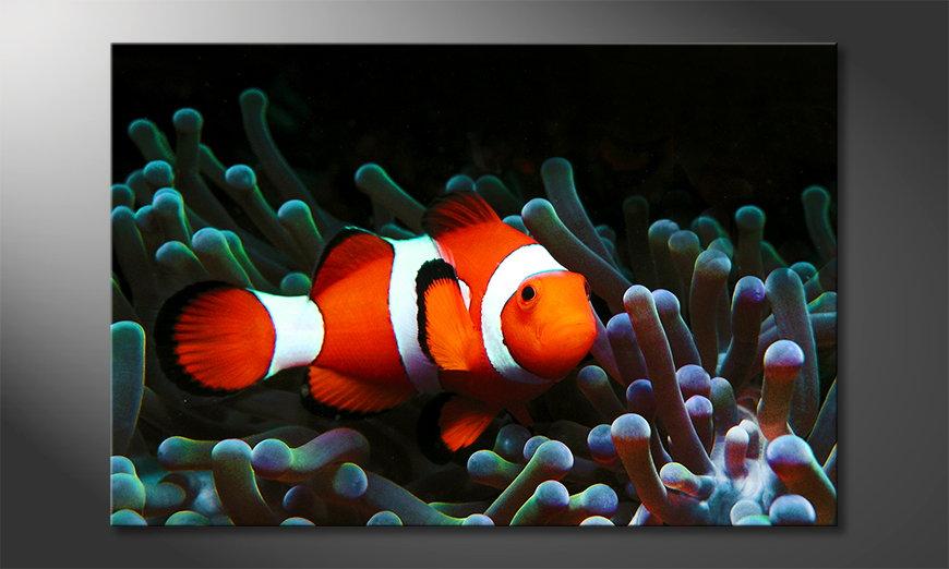 Het moderne Canvas Nemo