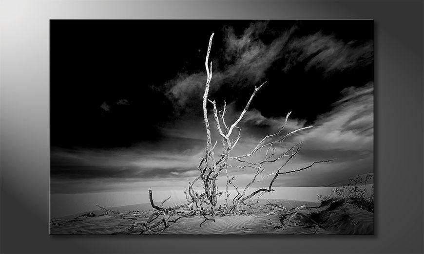 Modern canvas afdrukken Desert Landscape