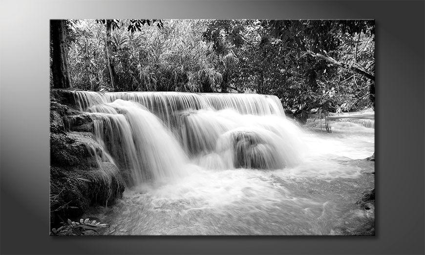 Modern canvas afdrukken Waterfall In Jungle