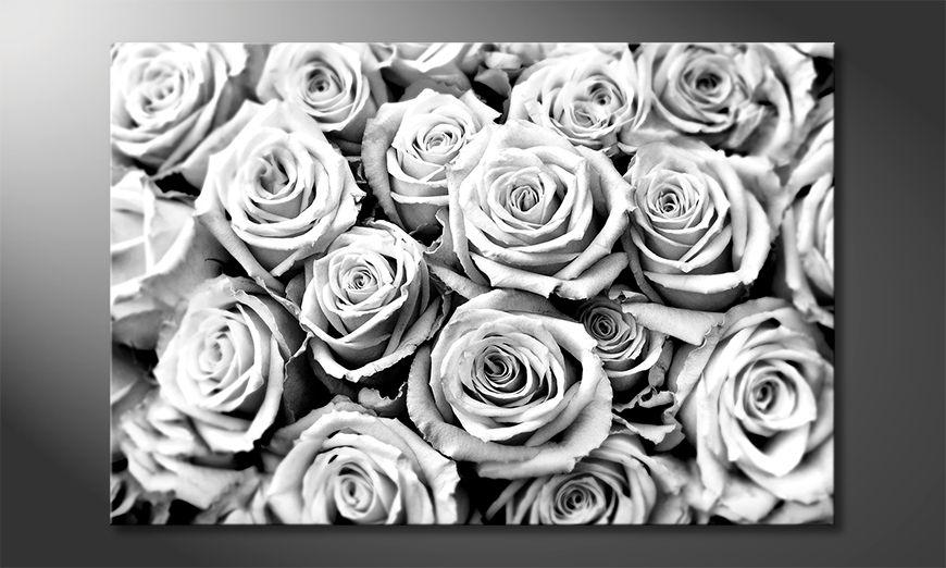 Modern decor Creamy Roses
