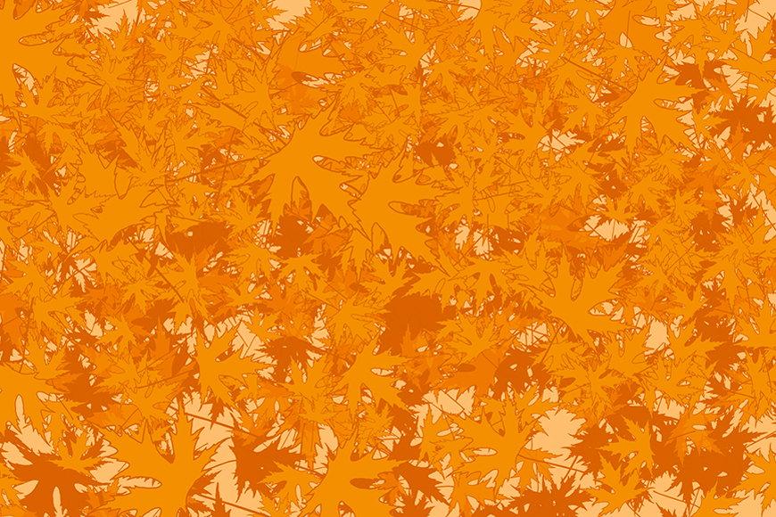 Vlies-behang Ahornbladeren vanaf 120x80cm