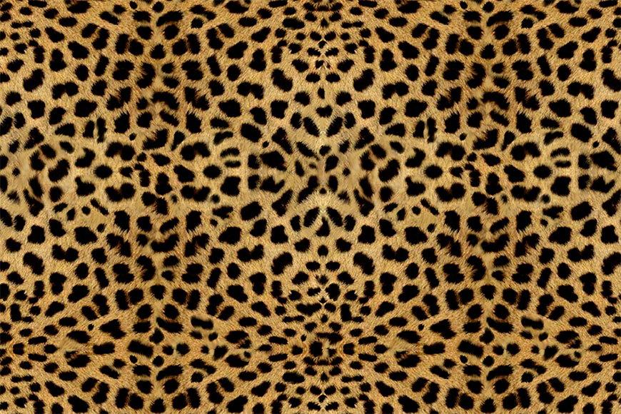 Vliesbehang Cheeta vanaf 120x80cm