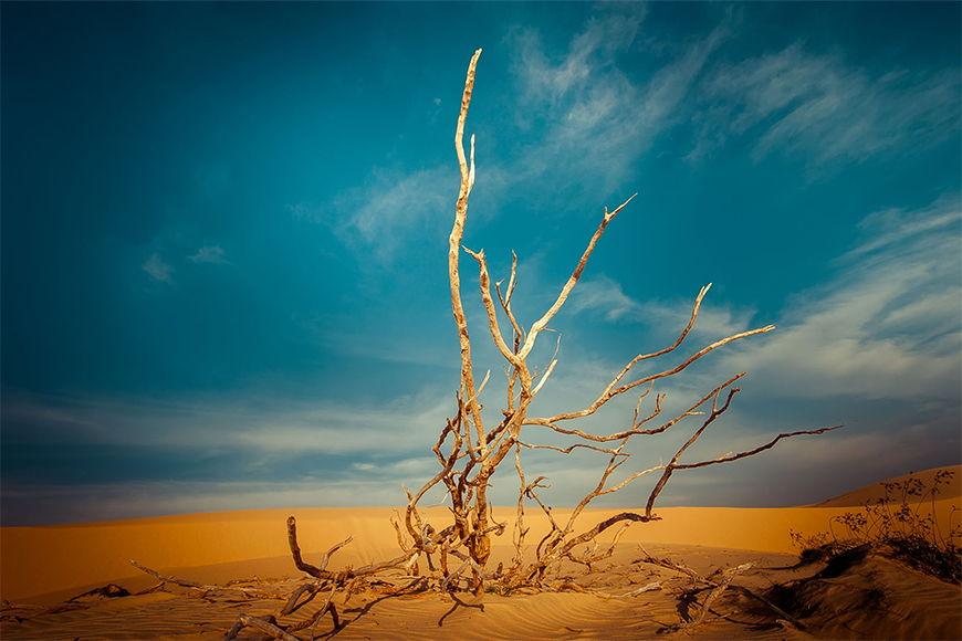 Vliesbehang Woestijnlandschap vanaf 120x80cm