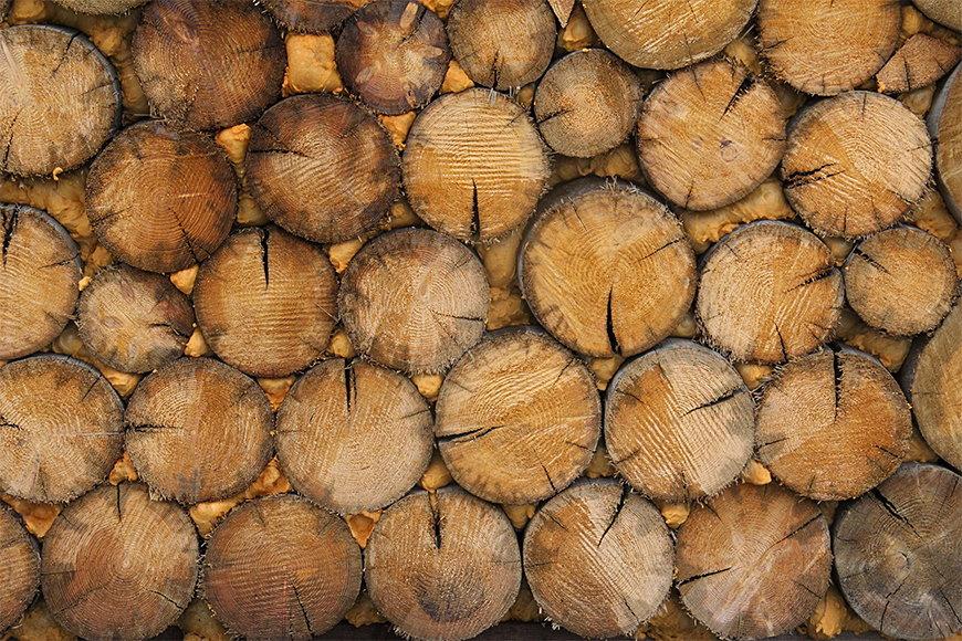 Vliesbehang Wood Wall vanaf 120x80cm